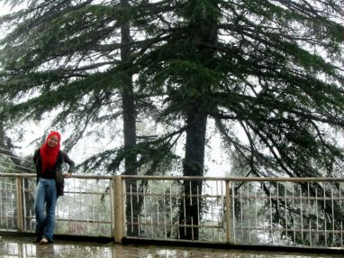 At the base of Himalayas, in the village of Dharmsala. I was standing in the raining mist, before the damage happened.